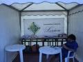 23 giugno 2017 - MOtesarchio (BN) - Campo Hobbit 40